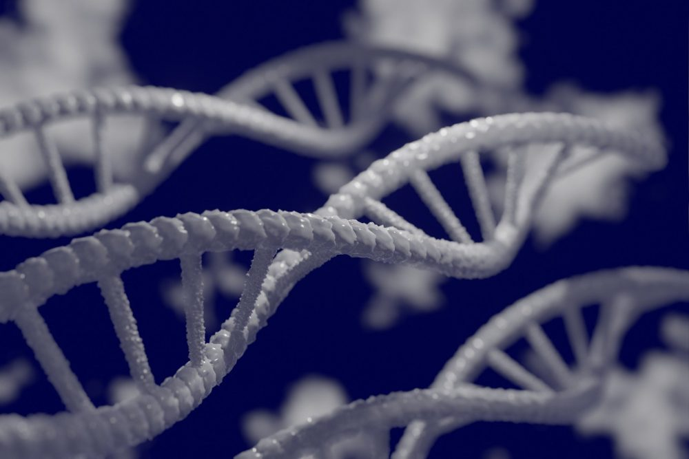 The human genome is not as unique as we thought. Credit: Pixabay