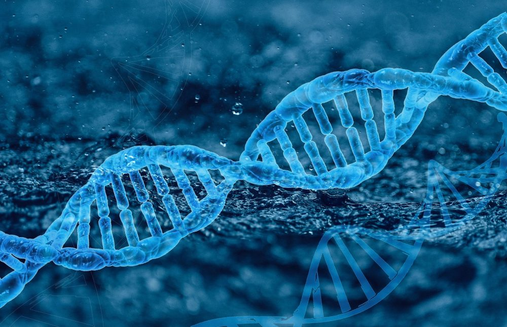 Scientists discovered a new gene type and called it the Borg DNA. Credit: Pixabay
