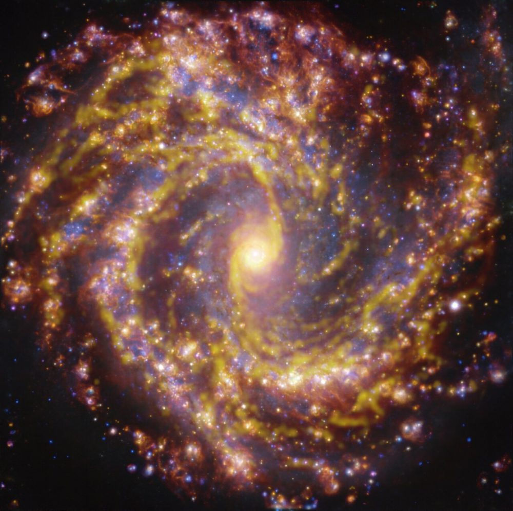 A view of Spiral Galaxy NGC 4303.