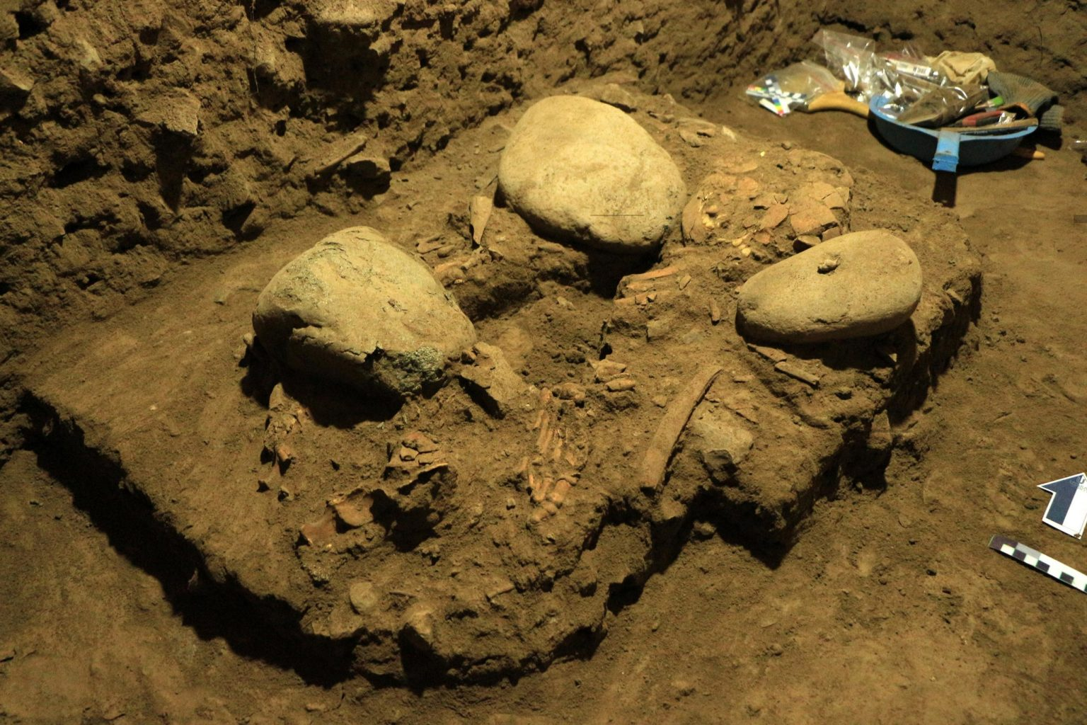 """The """"almost preserved skeleton"""" of the 'new human' found in the Leang Panninge cave. Credit: University of Hasanuddin"""
