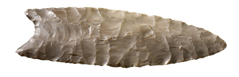 Clovis culture point from around 13,000 years ago, discovered in 1962. Credit: British Museum