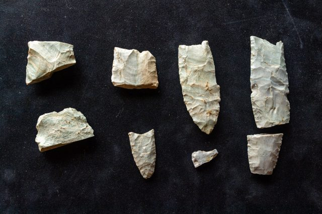 Researchers discovered more than 20 tools and hundreds of manufacturing debris from the Clovis Culture. Credit: Daryl Marshke/Michigan Photography