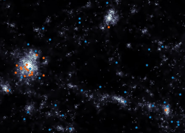 Distribution of star-forming (blue asterisks) and extinct (red asterisks) ultradiffuse galaxies in the simulated volume (dimensions along each axis are of the order of tens of megaparsecs). The overall galactic structure is shown in grayscale. Credit: José Benavides et al. / Nature Astronomy Letters, 2021