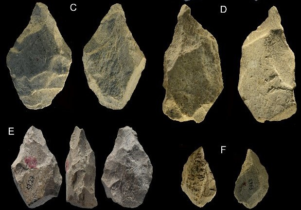Some of the 400,000-year-old elephant bone tools discovered in Italy. Credit: Paola Villa et al. / PLOS One, 2021