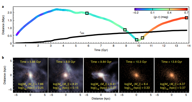 Top: diagram of the approach of an ultradiffuse galaxy with a cluster and the subsequent extinction of star formation. Time is plotted horizontally, and the distance to the center of the cluster is plotted vertically. The black solid line shows the size of the cluster. Bottom: schematic images of gas (shown in blue) and stars (shown in red) in an ultradiffuse galaxy at different stages of its evolution. Credit: José Benavides et al. / Nature Astronomy Letters, 2021