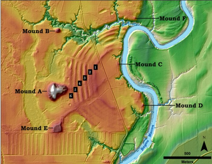 This illustration showes the features of the Poverty Point archaeological site. You can see the mounds that were studied in the past and you can see the six ridges that were discovered and studied recently. Credit: T.R. Kidder