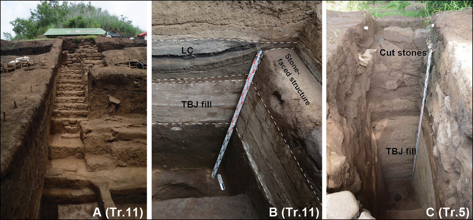 Structures at San Andres with designated layers. Credit: Akira Ichikawa / Antiquity, 2021