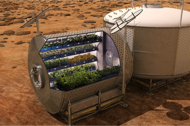 Scientists have proposed a new method to grow plants on Mars. Credit: NASA